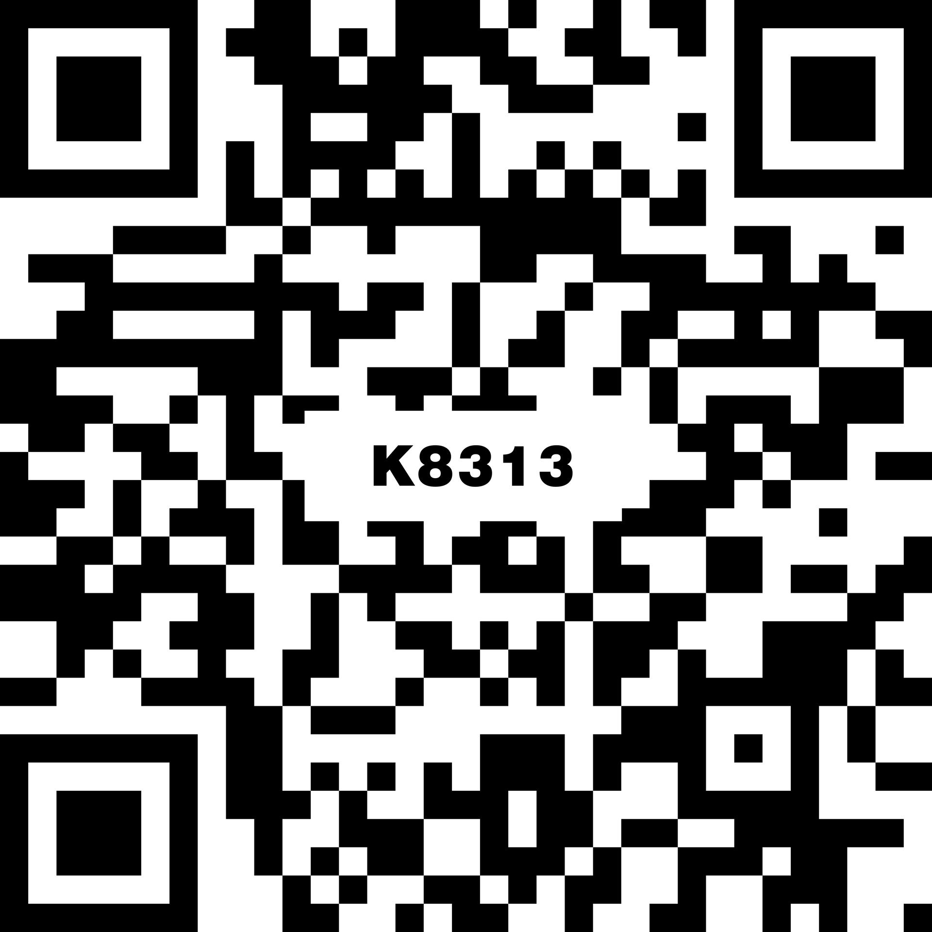 K8313