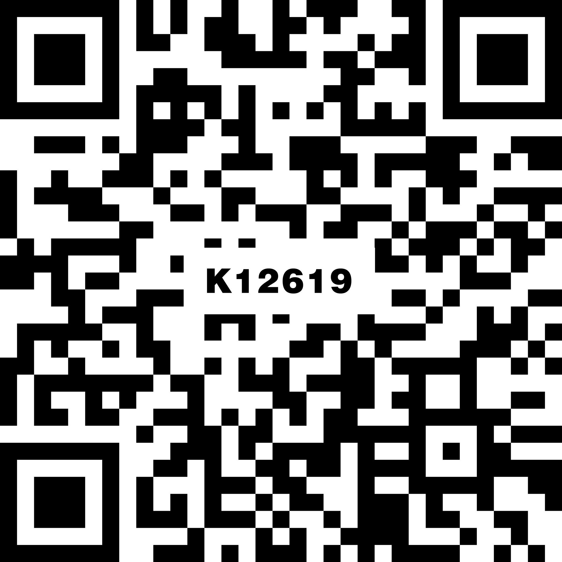 K12619