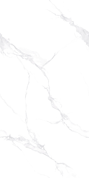 高级鱼肚白 12KT601
